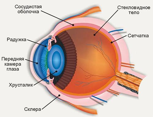 Коррекция зрения отзывы днепропетровск